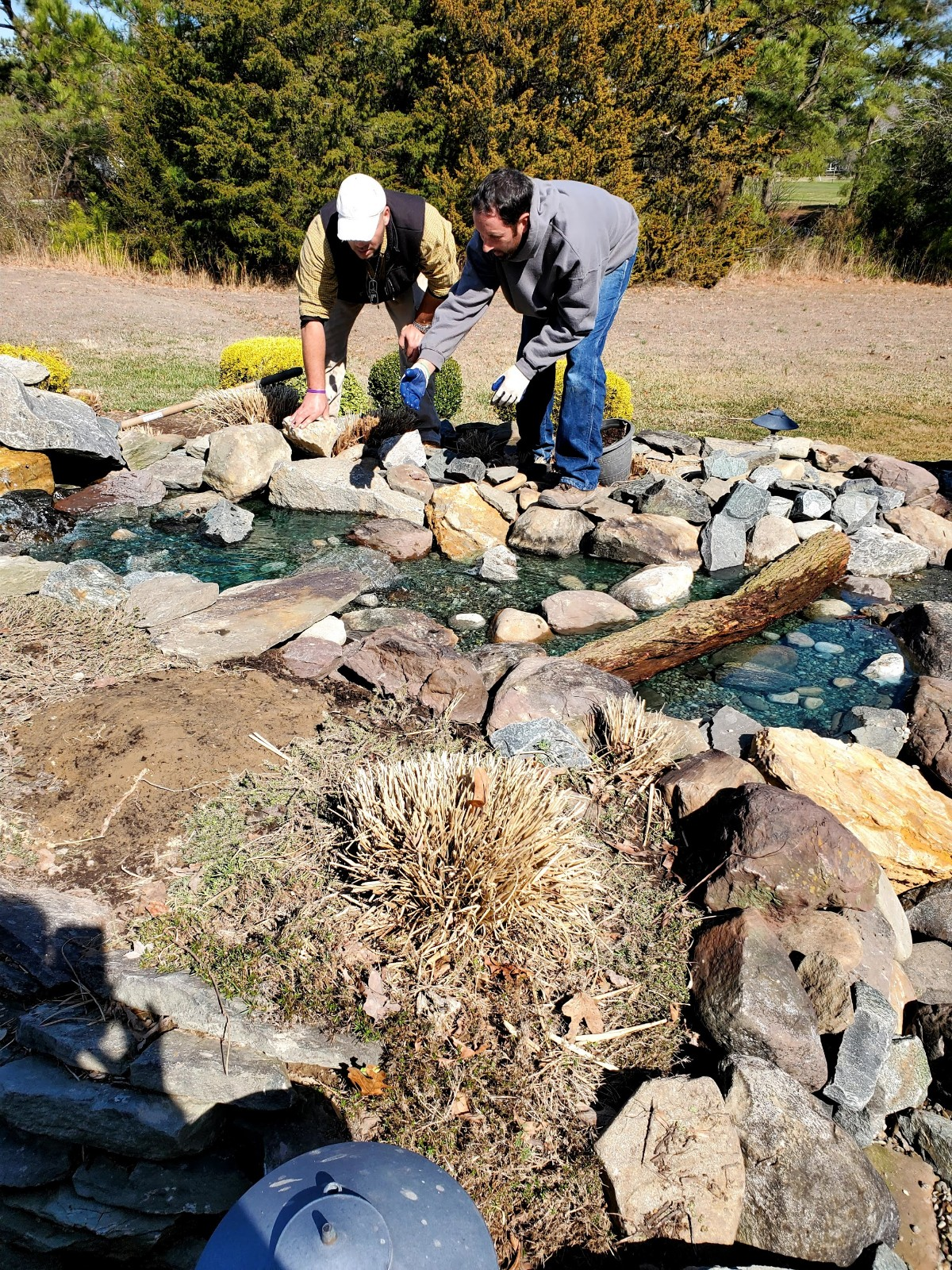 Building your  own pond in 5 easy steps